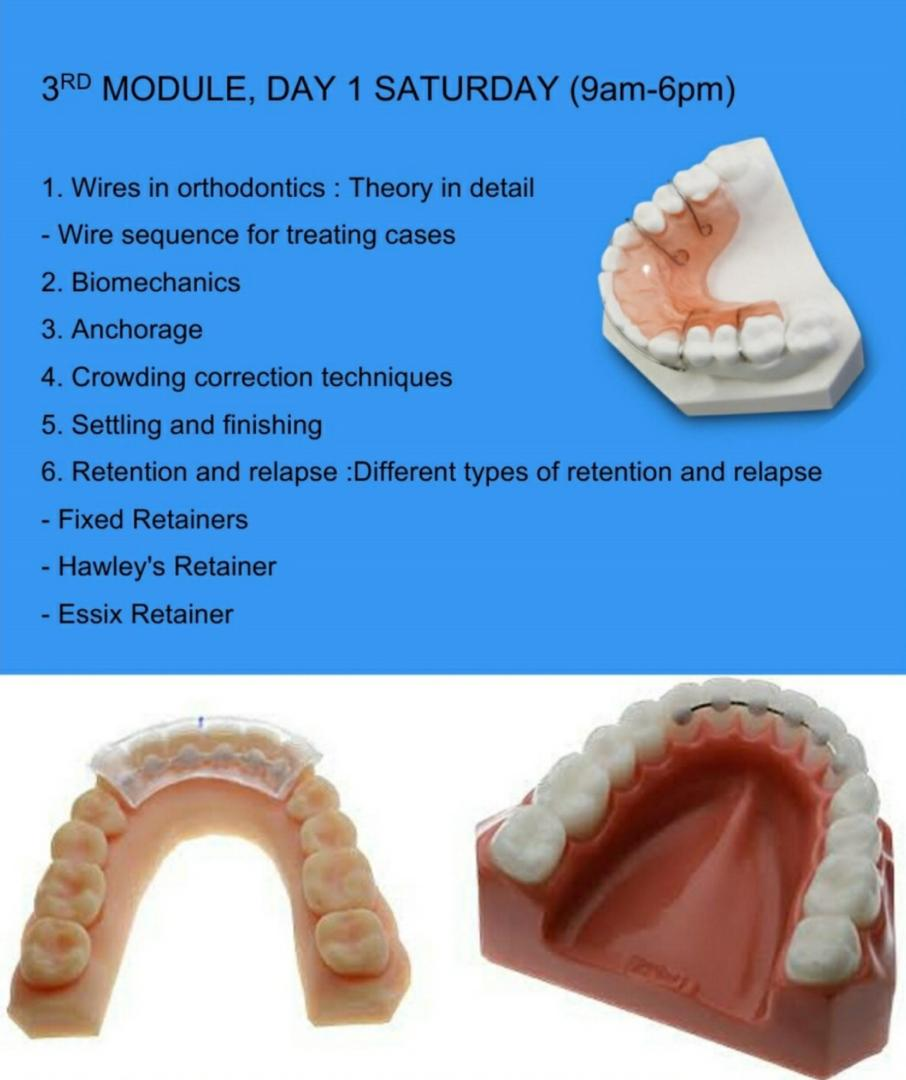 ortho-simplified-6